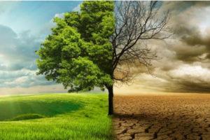 Почему некоторые люди до сих пор не воспринимают реальности изменения климата?!