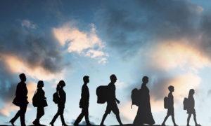 миграция